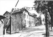 Secret Ceremony at Auschwitz